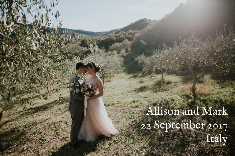 Basia mille wedding dress